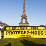 Picture from www.greenpeace.fr